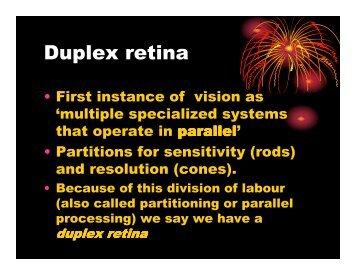 Duplex retina - Play Psych Mun