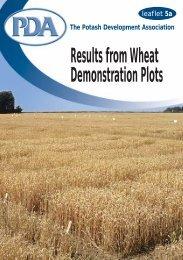 pdf 91kb - Potash Development Association