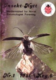 Insekt-Nytt #1 1981 - Norsk entomologisk forening