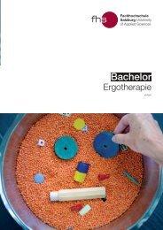Info-Brochure (German) - Fachhochschule Salzburg