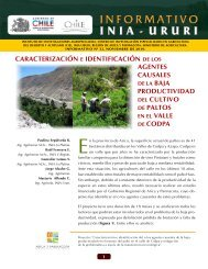Caracterización e identificación de los agentes ... - Platina - INIA
