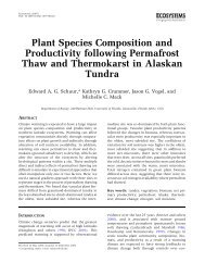 Plant Species Composition and Productivity following Permafrost ...