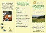 as plantas medicinais no desenvolvemento sostible das ... - IBADER