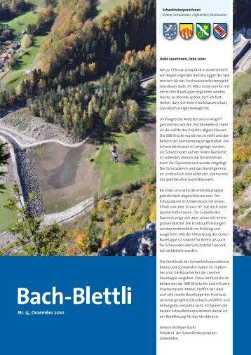 Nr. 15, Dezember 2010 - schwellenkorporationen.ch
