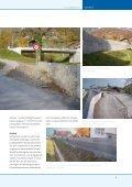 Nr. 15, Dezember 2010 - schwellenkorporationen.ch - Seite 5