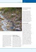 Nr. 15, Dezember 2010 - schwellenkorporationen.ch - Seite 7