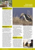 WWF-Russia - Page 2