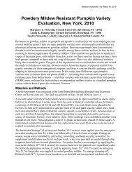 Powdery Mildew Resistant Pumpkin Variety Evaluation, New York ...