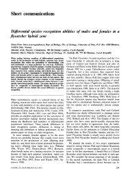 Journal of Avian Biology 28