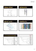 Semana Temática BIo-USP 2011 Hox, Parahox e Protohox - Page 2