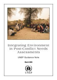Integrating Environment in Post-Conflict Needs Assessments
