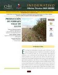 Producción de forrajes valle de Lluta - Platina - INIA