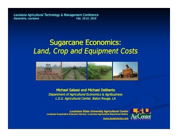 Sugarcane Economics - Louisiana Agricultural Consultants ...