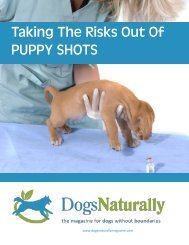 Taking The Risks Out Of PUPPY SHOTS - Dogs Naturally Magazine