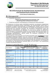 Informationsblatt Fachrichtung Fremdsprachen - Theodor-Litt-Schule