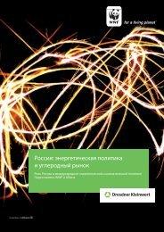 Россия: энергетическая политика и углеродный рынок