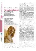 BF-1-2007 - Frančiškani v Sloveniji - Page 4