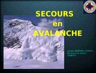 Avalanche-Pyrenees - Secours-montagne.fr