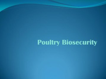 Poultry Biosecurity