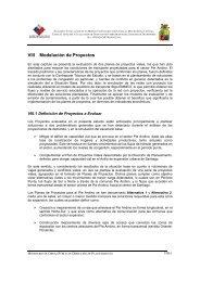 Capitulo VIII - Dirección de Planeamiento