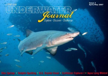 Issue 2 - Stingray Divers
