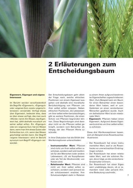 Bericht: Die Würde der Kreatur bei Pflanzen - EKAH - admin.ch