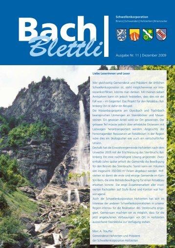 Ausgabe Nr. 11 | Dezember 2009 - schwellenkorporationen.ch