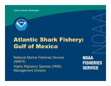 Atlantic Shark Fishery