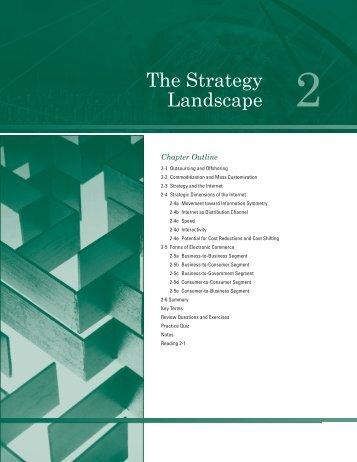 The Strategy Landscape - Atomic Dog Publishing