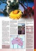 AustrAlien rundreise - Seite 2