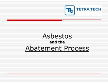 Asbestos Abatement Process