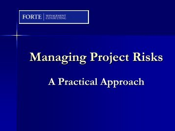 MAnaging Project Risk - A Practical Approach - gt islig