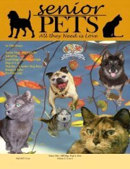 Senior Pets: All They Need is Love - Fall 2007 (Volume 2: Issue 2)