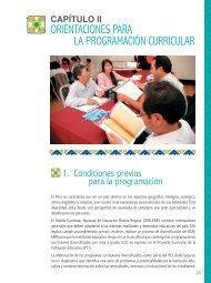 Orientaciones para la Programación Curricular - La Educación ...