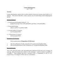 Lactate Dehydrogenase - CMBE