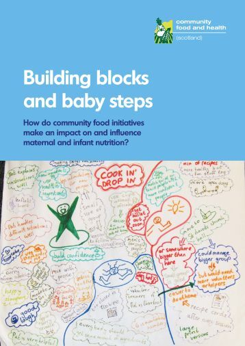 Building blocks and baby steps - Community Food and Health