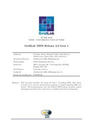 GridLab MDS Release 2.0 beta 1