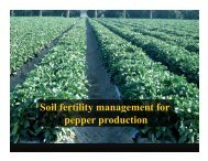 Soil fertility management for y g pepper production