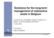 Solutions for the long-term management of radioactive waste in ...