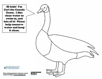 Animal Coloring pages.pdf - Fayette County Soil & Water ...