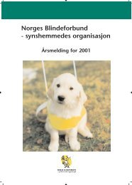 Norges Blindeforbund - synshemmedes organisasjon