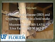 Inclusion body disease (IBD) and Cryptosporidiosis in a boid snake