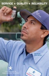 SERVICE QUALITY RELIABILITY - American Water