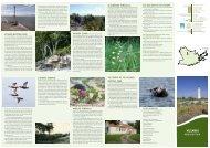 ENG - Keskkonnaamet