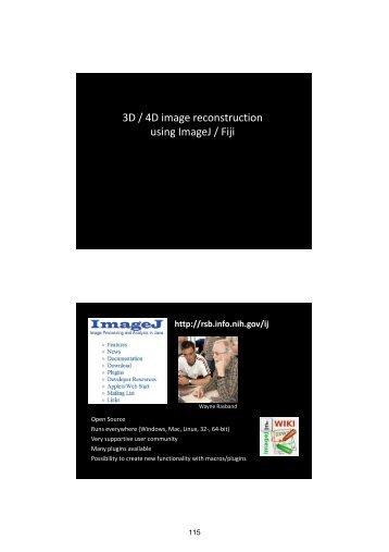 3D / 4D image reconstruction using ImageJ / Fiji - Encite