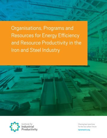 Organizations, Programs and Resource Productivity in the Iron