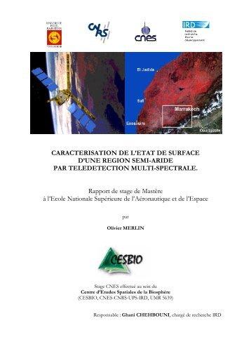 CARACTERISATION DE L'ETAT DE SURFACE D'UNE ... - CESBIO