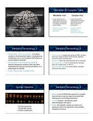 Quantitative Genomics slides - Brainmapping.ORG