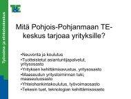 Mitä Pohjois-Pohjanmaan TE-keskus tarjoaa yrityksille? - Oamk