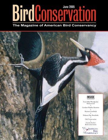 June 2005 INSIDE - American Bird Conservancy